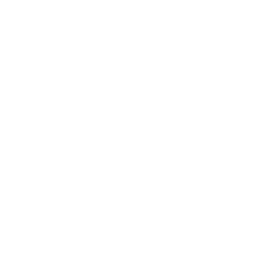 white papercut snowflake